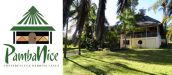 PambaNice - Accommodation & Venue